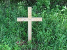 Tim's Cross
